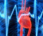 Учащенное сердцебиение - есть ли повод для беспокойства?