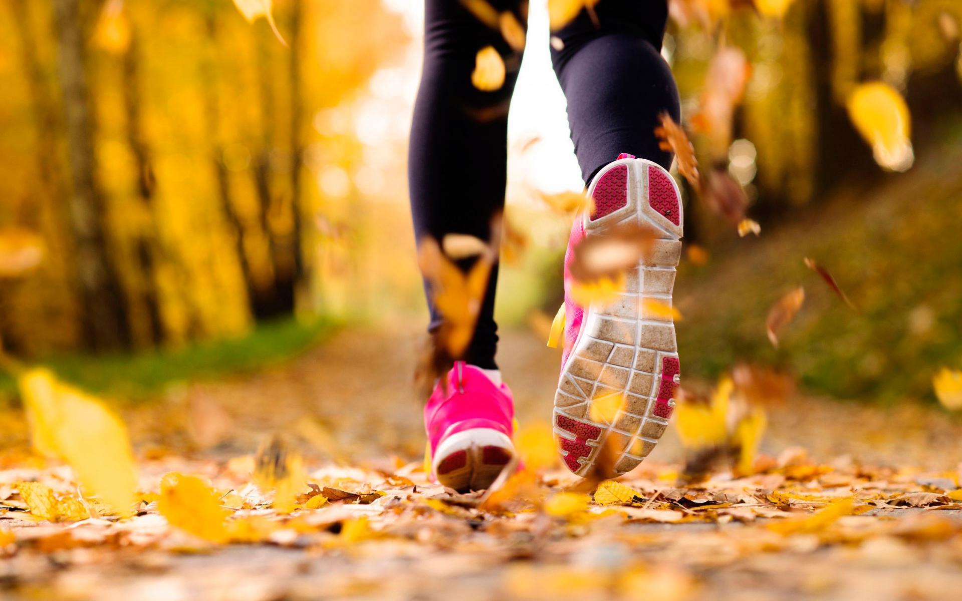 преимущества утренней и вечерней тренировки