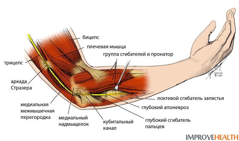 локтевой сустав заболевание и лечение