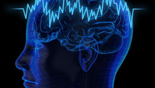 Фото 6 - Функции головного мозга